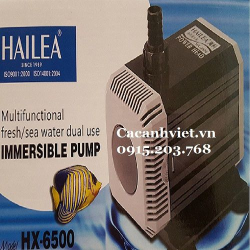 Máy Bơm Chìm Hailea HX-6500