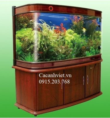 Bể Cong Minjiang R9 1800GM