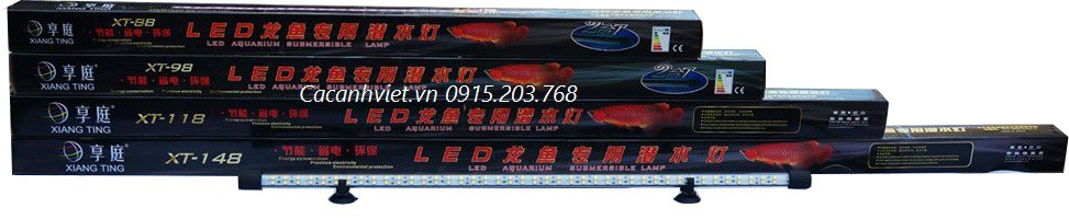 Đèn led bể cá rồng XT-98 vàng đôi có nhiệt độ